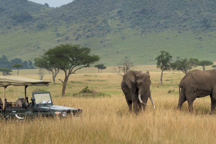 Fly me around Kenya Bateleur Camp